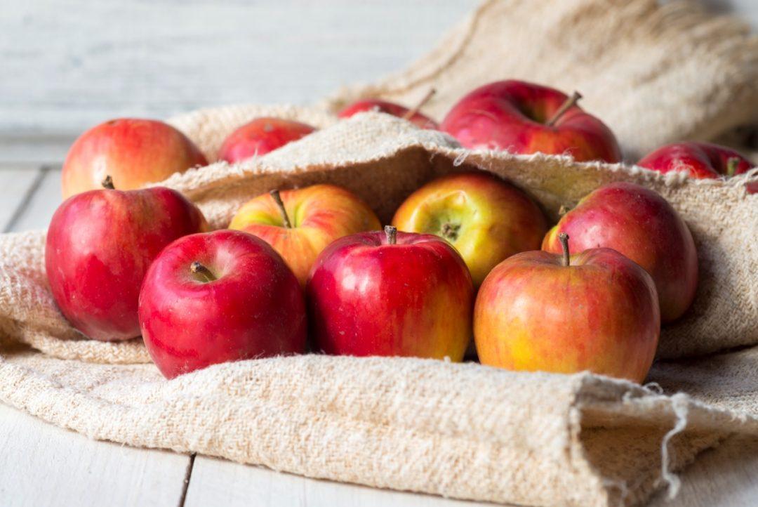 le ricette di tescoma torta di mele